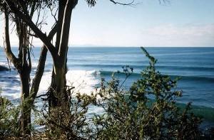 surfing around Tasmania